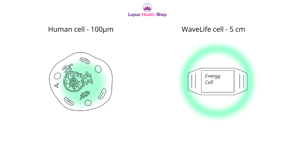 wavelife cell pain management cell size - Lupus Health Shop