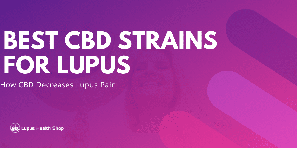 best cbd strains for lupus - how cbd decreases lupus pain - Lupus Health Shop